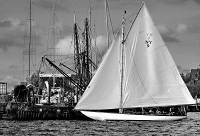 Amorita sailing in Newport Harbor